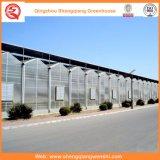 꽃 또는 과일 또는 야채 차양 시스템을%s 가진 성장하고 있는 PC 장 녹색 집