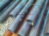 중국 공장에 의하여 냉각 압연되는 이음새가 없는 탄소 강관 20# 25mm*2mm