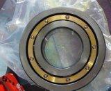 Cuscinetto a rullo di Cylinderical di alta qualità (Nj2205)