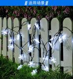C forma parte de la boda de la pared de tierra Multicolorful Cadena Solar decoración tira bolas de bombilla LED Linterna Lámpara de luz