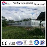 Equipamento da exploração avícola da galinha para a galinha da carne