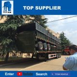 Het Voertuig van de titaan - 12 de Meter Lange Semi Aanhangwagen van het Vervoer van de Container