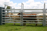 Австралийский стандарт 1.8 X 2.1m оцинкованных крупного рогатого скота панели Китай поставщика