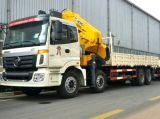 Grosse Förderung: Foton 8X4 Cargo Truck Chassis