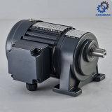 Lichte Micro- van het Type van Plicht AC Inductie Motor_D