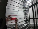 Runde schnitzende handgemachte verzierte Spiegel-Wand-Dekoration