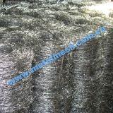 Anping-Galvano galvanisierter Stacheldraht