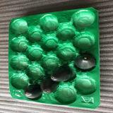Все размеры одноразовые экологически безвредные PP пластиковый лоток для фруктов