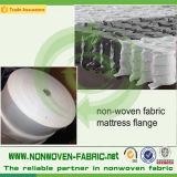 Fornitore del tessuto Nion-Tessuto Spunbond dei pp in Cina