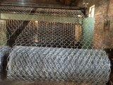 С покрытием из ПВХ низкоуглеродистой проволоки оказании помощи мятежникам в салоне
