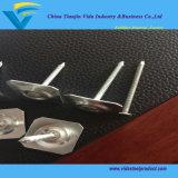 Fabbrica del chiodo protezione rotonda/quadrata del metallo