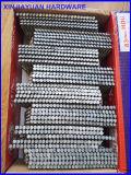"""2 """" прокладки ногтей 21degree прокладки X. 113 (6D) HDG ногтя пластичных пластичных обрамляя"""