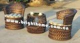 Ganascia di tessitura di vimini di svago Set/Balcony della mobilia/fiore del rattan del PE (BP-262)