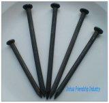 Jinhuaの高品質の黒く具体的な釘