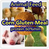 Клейковина мозоли на протеин 60% животного питания