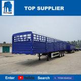 Del TITANO 3 degli assi della rete fissa rimorchio semi in rimorchio del camion per capienza di caricamento 50ton