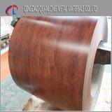 A cor de PPGI revestiu a bobina de aço com o teste padrão de madeira
