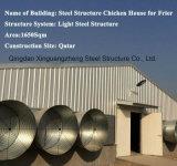 Casa de aves de capoeira para a fábrica de Estrutura de aço