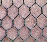 Rede de fio personalizada da soldadura força de alta elasticidade sextavada para a galinha/aves domésticas