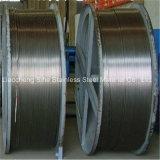 ASTM A269 TP304 sans soudure en acier inoxydable avec une grande quantité de tube de la bobine