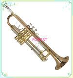 빨간 구리 트럼펫, 금 래커, Monel 피스톤