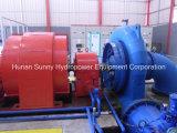 Tête hydraulique/Hydroturbine de mètre du turbo-générateur 29-165 de Francis d'hydro-électricité (l'eau)