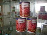 Venda quente cultura fresca de excelente qualidade para conservas de Feijão vermelho