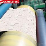 Kundenspezifisches Ziegelstein-Muster PPGI der Art-3D für Hauptdekoration