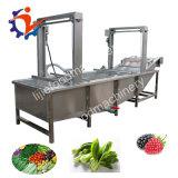 Bolhas de ar industriais máquina de limpeza de frutas e produtos hortícolas