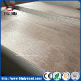 Grado uno Bintangor/madera contrachapada comercial de lujo de la madera dura para los muebles y la cabina