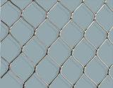 Maglia o rete del cavo dell'acciaio inossidabile di alta qualità dal fornitore della Cina