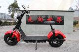 Motocicleta dobro grande popular da roda 1500W Citycoco Pólo Harley