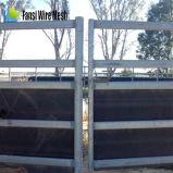 Painéis usados revestidos da cerca do cavalo da cor verde