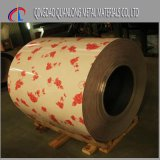 Bobina de acero cubierta color de PPGI con el modelo de madera