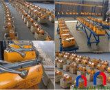 1000 Fabrikant de van certificatie kg ISO/SGS/Ce Hand Permanente Opheffende van de Magneet