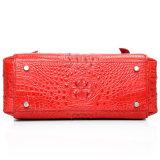 Schöner Luxuxentwurfs-zitiert roter echter Krokodil-Leder-Abend-Beutel für Damen mit Bescheinigung