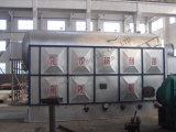 Le charbon a allumé la chaudière à vapeur avec la grille à chaînes (DZL)