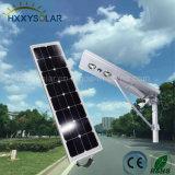 40W tout dans une lampe extérieure de DEL Graden avec le panneau solaire