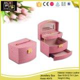 De hart-gevormde Roze Mooie Doos van Juwelen (8006)