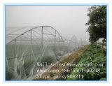 反昆虫のネットの農業の緑のネット