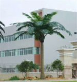 Einfach getarnten Palme-Antennenmast-Fernsehturm installieren