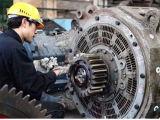 Hohe Präzisions-Eisen-Schmieden-Gang hergestellt in China