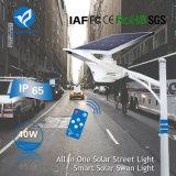 40W Produits Solaires Jardin de feu de route d'éclairage à LED