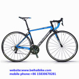 Bici de montaña caliente el competir con de camino de la fibra del carbón de la bicicleta de la venta 700c