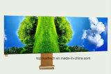 5.0 indicador da polegada 540*960 LCD com indicador industrial do controle da personalização