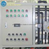 sistema del RO 750lph nel sistema di purificazione di acqua