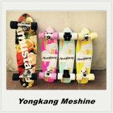 Commerce de gros bois d'érable skateboard