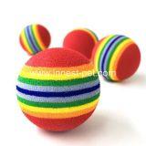 Il rifornimento dell'animale domestico gioca la sfera variopinta del Rainbow di tennis del cane