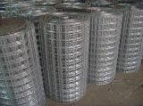 Galvaznied ha saldato la rete metallica fatta in buona fabbrica