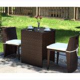 Lo SGS ha collaudato la mobilia del giardino di Ratan a vendita calda